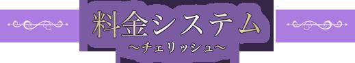"""料金システム  〜""""密着""""のチェリッシュ〜"""