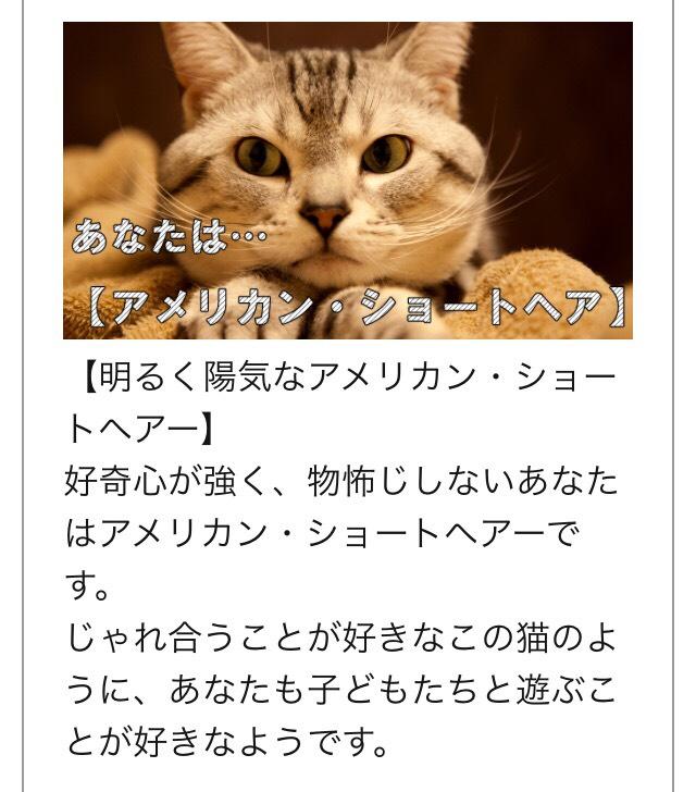 Image_1ae0207