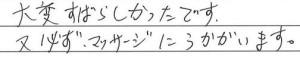 ハヤノ様のご感想