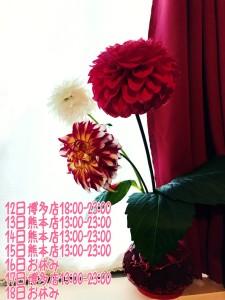 EFE328B4-B693-4BFD-A894-5B86E475D5B9