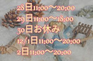 18-11-28-10-48-10-789_deco